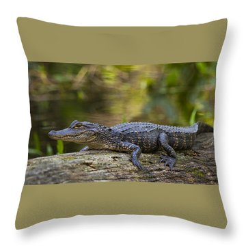Gator Time Throw Pillow
