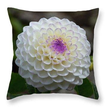 Gaylen Rose Dahlia 2 Throw Pillow