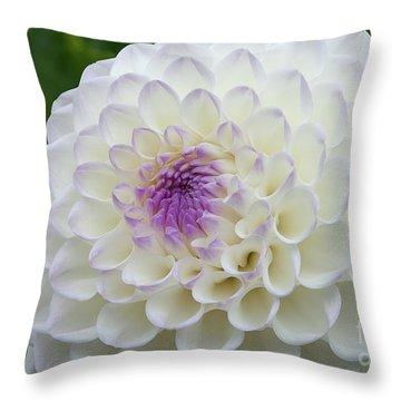 Gaylen Rose Dahlia 3 Throw Pillow