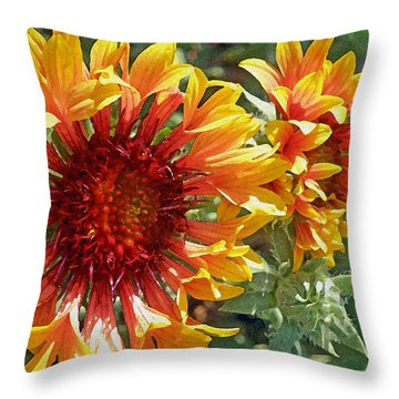 Gazanias Throw Pillow