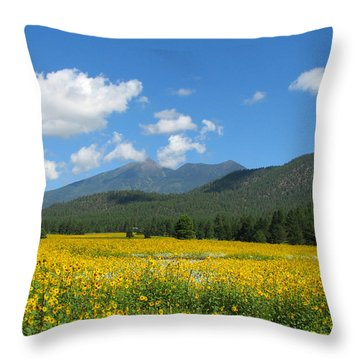 Gazing Serene Throw Pillow