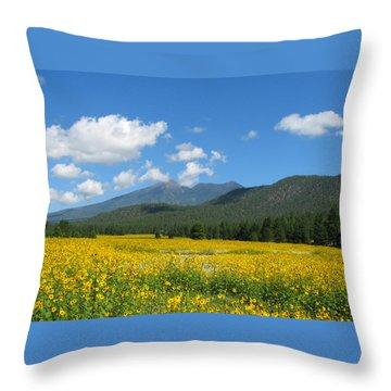 Gazing Serene Throw Pillow