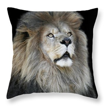 Gazing V2 Throw Pillow