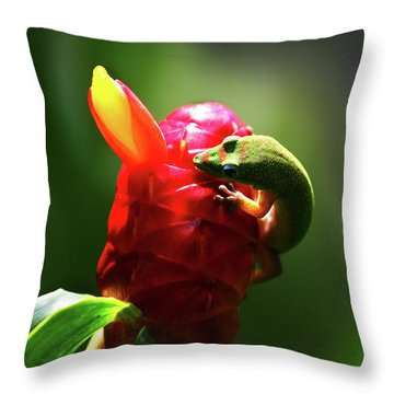 Throw Pillow featuring the photograph Gecko #1 by Anthony Jones