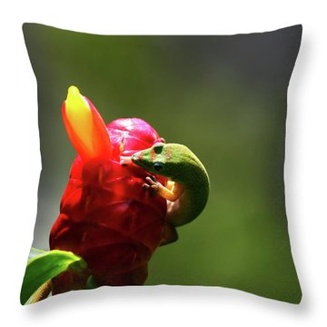 Throw Pillow featuring the photograph Gecko #2 by Anthony Jones