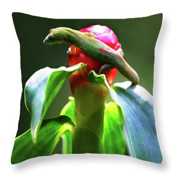 Throw Pillow featuring the photograph Gecko #3 by Anthony Jones