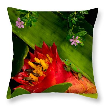 Gecko Aloha All Proceeds Go To Hospice Of The Calumet Area Throw Pillow