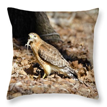 Gecko For Lunch Throw Pillow