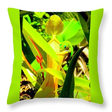 Gecko On Mosquito Catcher Orchid Throw Pillow