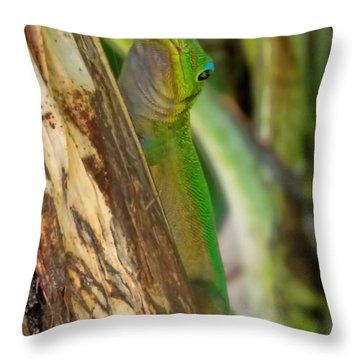 Gecko Up Close Throw Pillow