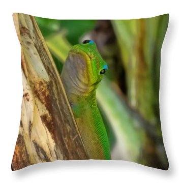 Gecko Up Close Throw Pillow