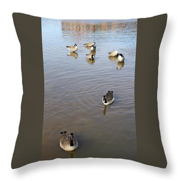 Geese At Sundown Throw Pillow by Ellen Tully