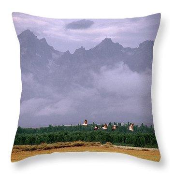 Geese, Grand Tetons Throw Pillow