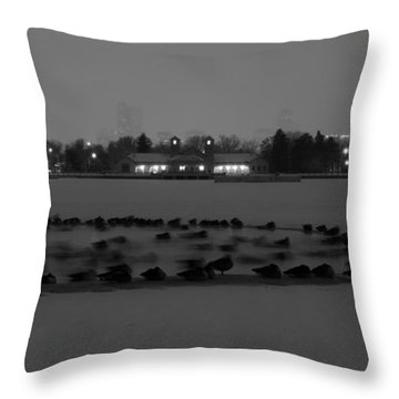 Geese In Frozen Lake Throw Pillow
