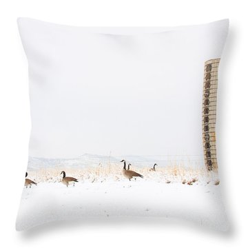 Geese In The Snow With Silo Throw Pillow by James BO  Insogna