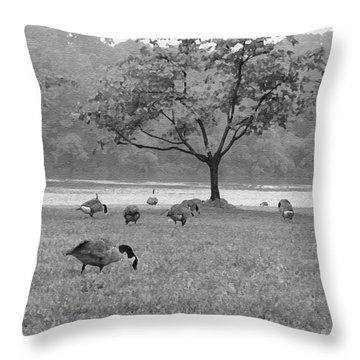 Geese On A Rainy Day Throw Pillow by Bill Cannon