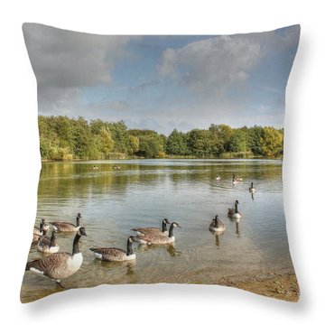 Geese On The Lake Hdr Throw Pillow
