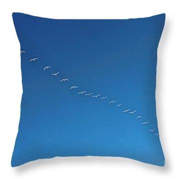 Geese On The Run Throw Pillow
