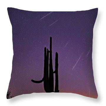 Geminid Meteor Shower #1, 2017 Throw Pillow