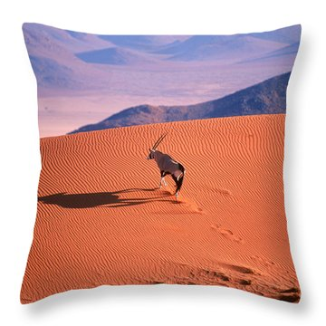 Gemsbok Throw Pillow by Eric Hosking and Photo Researchers