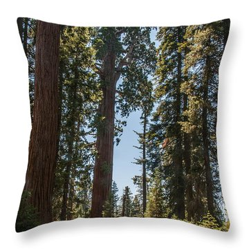 General Grant Tree Kings Canyon National Park Throw Pillow
