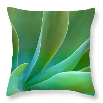 Throw Pillow featuring the photograph Gentle Curves Of Agave Attenuate by Ram Vasudev