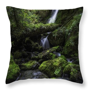 Gentle Cuts Throw Pillow by James Heckt