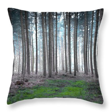 Gentle Dawn Throw Pillow by Svetlana Sewell