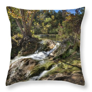 Gentle Mountain Stream Throw Pillow by Tamyra Ayles