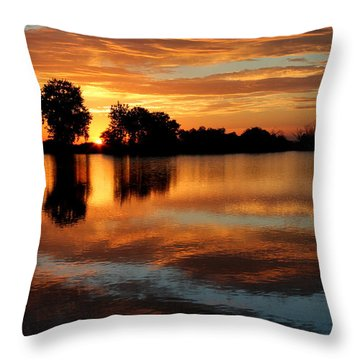 Gentle Pond Throw Pillow
