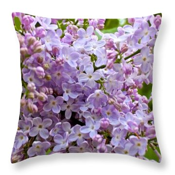 Gentle Purples Throw Pillow