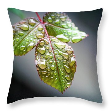 Gentle Rain Drops Throw Pillow