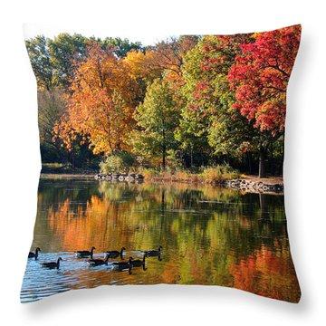 Gentle Reflections Throw Pillow by Teresa Schomig