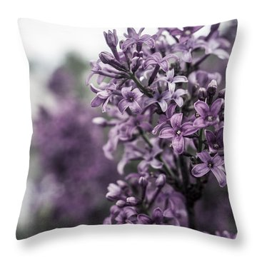 Gentle Spring Breeze Throw Pillow by Miguel Winterpacht
