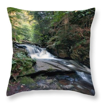 Gentle Summer Flow Over Conestoga Falls Throw Pillow