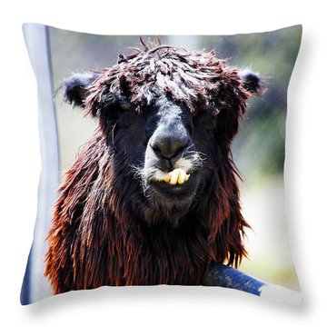 Geofery Throw Pillow