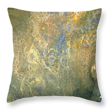Geology Beginnings Throw Pillow