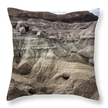 Throw Pillow featuring the photograph Geology Lesson 2 by Melany Sarafis