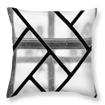Throw Pillow featuring the photograph Geometric Glasswork by Christi Kraft