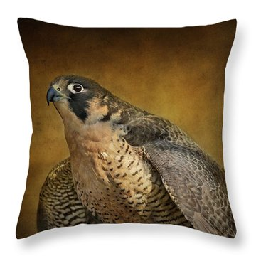 Georgette With Texture Throw Pillow