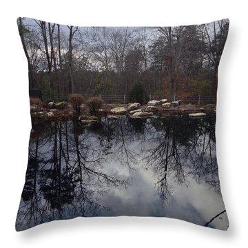 Georgia December Sky Reflected Throw Pillow