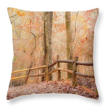 Georgia Fall Throw Pillow by RC Pics