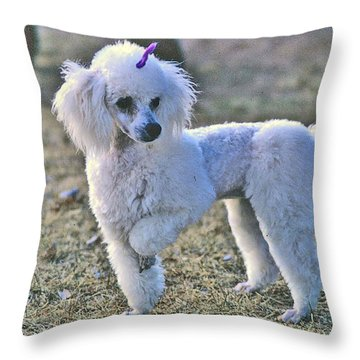 Georgie Throw Pillow