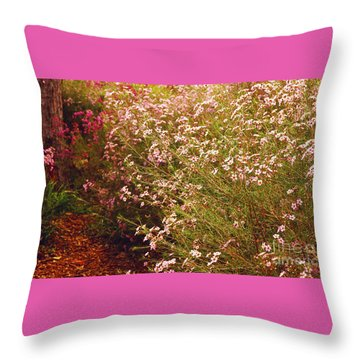 Geraldton Wax Shades Throw Pillow