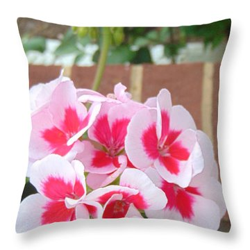 Geranium Pink Flowers Throw Pillow by Charlotte Gray