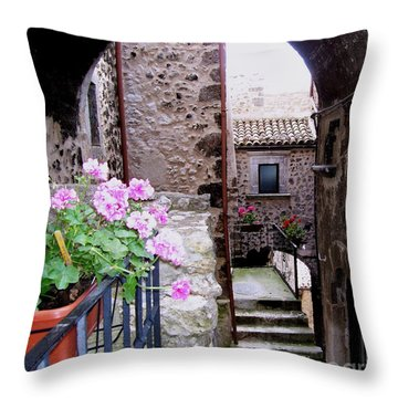 Throw Pillow featuring the photograph Geraniums by Judy Kirouac