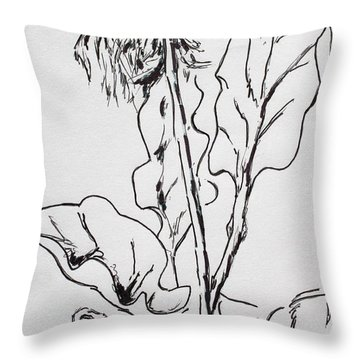 Gerber Study I Throw Pillow