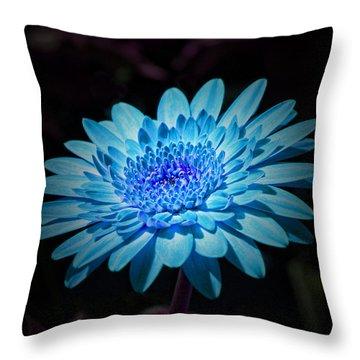 Gerbera Daisy Art Throw Pillow