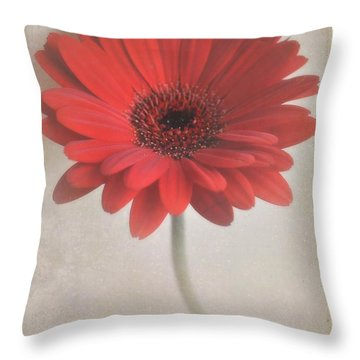Throw Pillow featuring the photograph Gerbera Daisy by Lyn Randle