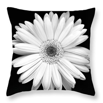 Single Gerbera Daisy Throw Pillow